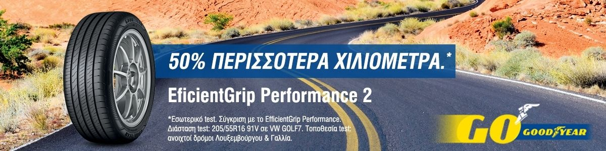 Efficient Grip Performance 2